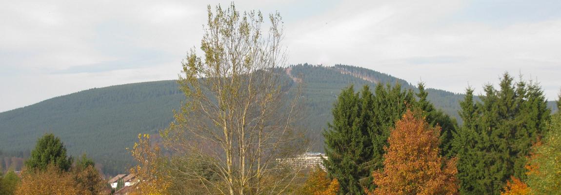 Der Wurmberg